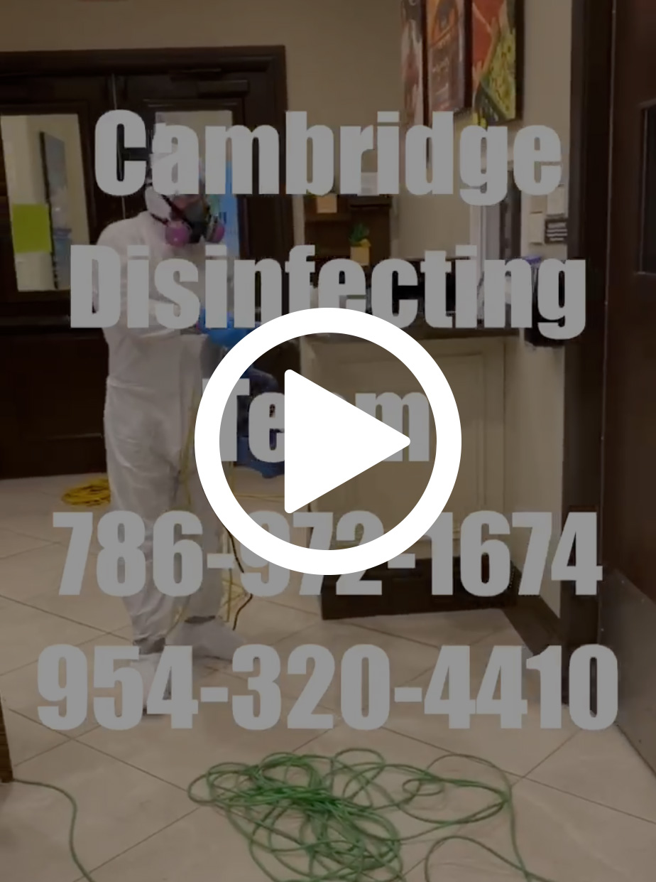 cambridge-cleaning-video